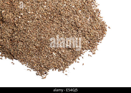 Fennel tea - a pile of fennel seeds isolated on white background - Stock Photo