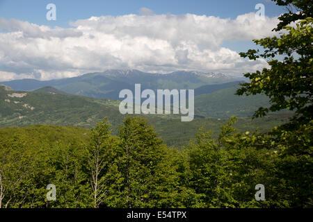 View of Orecchiella mountain range from summit of Passo della Radici, near San Pellegrino in Alpe, Garfagnana, Emilia - Stock Photo