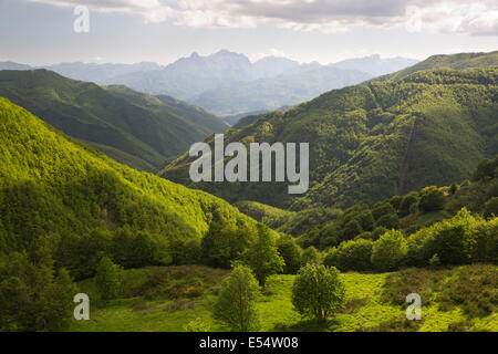 View over the Orecchiella and Alpi Apuane mountains, San Pellegrino in Alpe, Garfagnana, Tuscany, Italy, Europe - Stock Photo