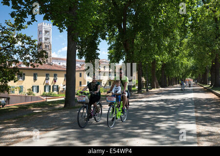 Cycling atop the city walls with the tower of the Duomo di San Martino, Lucca, Tuscany, Italy, Europe - Stock Photo