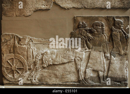 Stone panel from the Central Palace of Tiglath-pileser III. Nimrud (ancient Kalhu). Northern Iraq. Neo-Assyrian. - Stock Photo