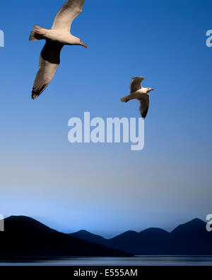 DIGITAL ART: The Birds (Background Taransay, Outer Hebrides of Scotland) - Stock Photo