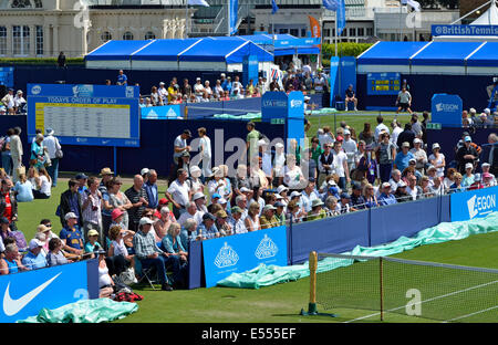 Aegon International Tennis, Eastbourne. Spectators on the outside courts