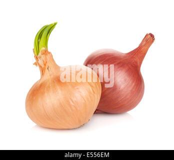 Fresh ripe onion. Isolated on white background - Stock Photo