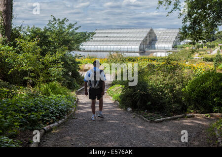 Senior man with rucksack walking along path towards Bicentenary Glass House in Summer at Wisley RHS Gardens, Surrey - Stock Photo