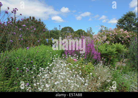 A traditional English cottage garden at Rosemoor, near Torrington, Devon, South West England, UK, photraphed in - Stock Photo