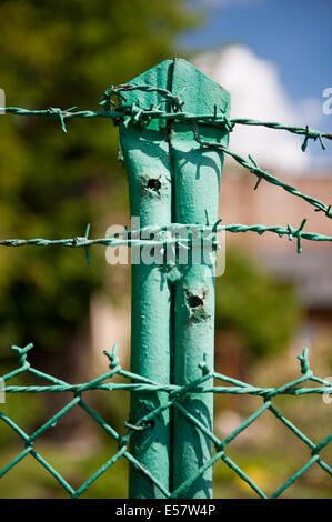 Green steel barbed wire fence - Stock Photo