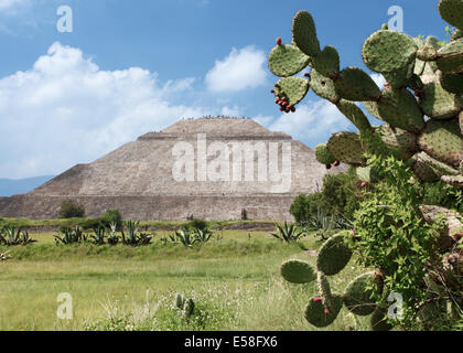 Pyramid of the Sun and Prickly Pear Cactus, Teotihuacan, Mexico - Stock Photo