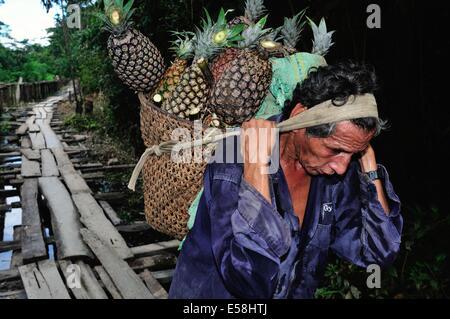 Selling pineapple - Traditional bridge in PANGUANA . Department of Loreto .PERU - Stock Photo