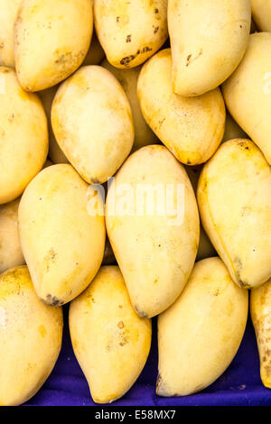 Mango exotic fruit for sale in a fruit market in Thailand - Stock Photo