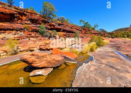 Palm Valley Central Australia Northern Territory - Stock Photo