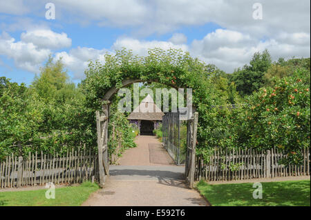 A traditional English Fruit and Vegetable Garden at Rosemoor, Torrington, Devon, South West England, UK - Stock Photo
