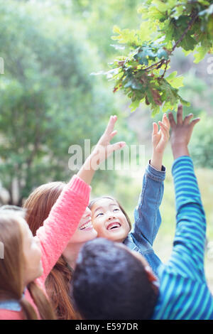Teacher and students reaching for leaves on tree - Stock Photo