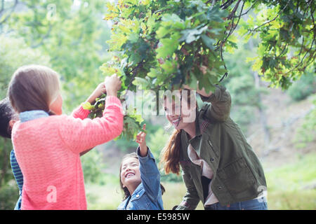 Students and teacher examining leaves outdoors - Stock Photo