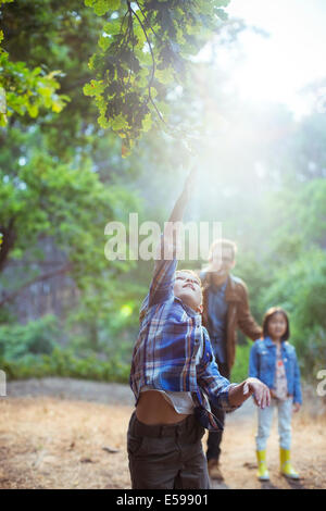 Boy catching glowing ball in forest - Stock Photo