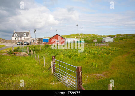 Community gardening project at North Bay, Isle of Barra, Outer Hebrides, Scotland - Stock Photo