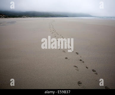 Foot step prints in wet sand on a cloudy overcast day at Traigh Eais beach, Barra, Outer Hebrides, Scotland - Stock Photo