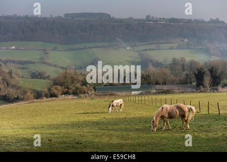 View over Slad Valley near Stroud, Gloucestershire, UK - Stock Photo