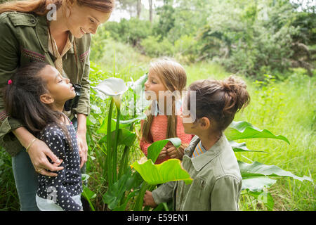 Students and teacher examining plants outdoors - Stock Photo