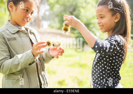 Children examining plants outdoors - Stock Photo