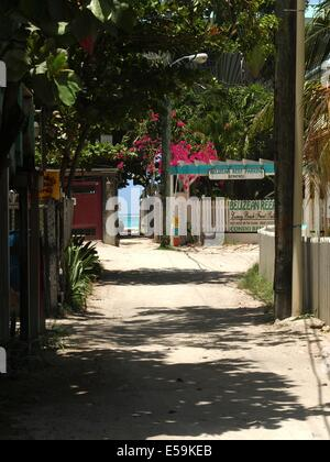 A path to the beach and the ocean in the distance on Ambergris Caye, Belize - Stock Photo