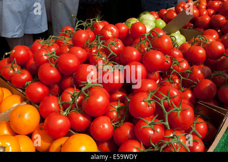 Vine ripe tomatoes at Farmers Market - Stock Photo