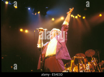 PHIL COLLINS  UK rock musician about 1985 - Stock Photo