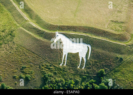 Aerial view Westbury White Horse at Bratton Camp, Wiltshire, UK. JMH6197 - Stock Photo