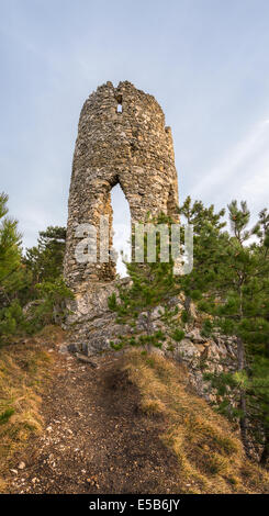 Ruins of a Castle on a Rock with Coniferous Trees Located in Nature Park Seebenstein-Turkensturz. - Stock Photo