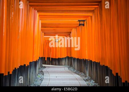 Fushimi Inari Taisha Shrine torii gates in Kyoto, Japan. - Stock Photo