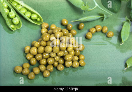 Boiled green peas on a platter, pods and branches - Stock Photo