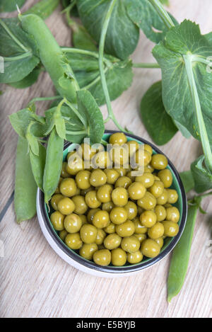Boiled green peas in a cup, pods and branches - Stock Photo