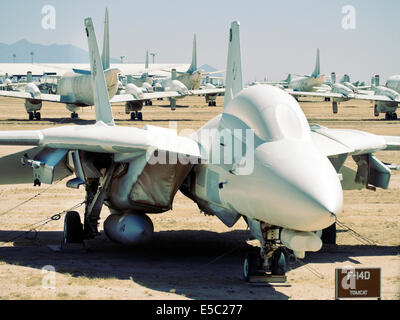 F14D Tomcat in the Boneyard Davis-Monthan Air Force base Tucson Arizona USA - Stock Photo