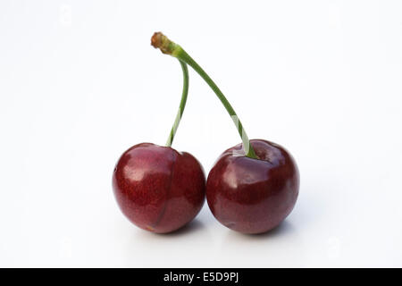 Two cherries on a white background. - Stock Photo