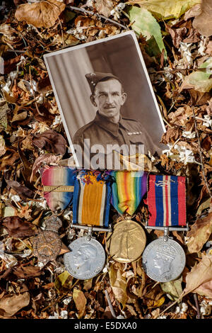 Photograph of a veteran of the First and Second World Wars with some of his medals. - Stock Photo