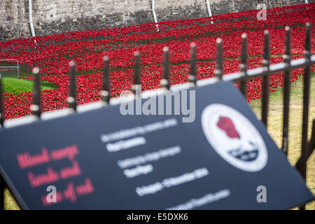 London, UK. 29th July, 2014. Ceramic poppies planted at Tower of London to mark World War I deaths Credit:  Guy - Stock Photo
