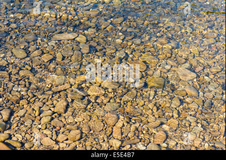 Pebbles and reflections on river Wye river bed - Stock Photo