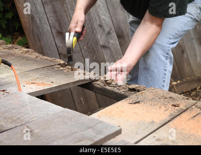 A man takes apart an old fence in his backyard. - Stock Photo