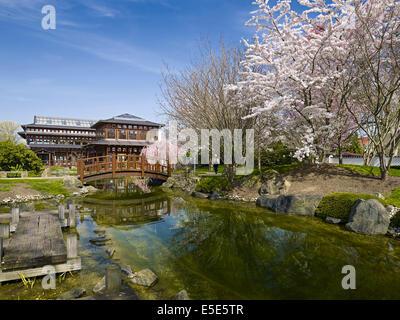 japanese garden in bad langensalza germany stock photo
