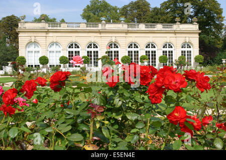 France, paris 16e, bois de boulogne, parc de bagatelle, pavillon, orangerie, jardin, roseraie, roses rouges, - Stock Photo