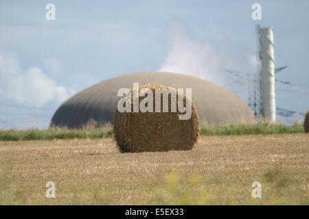 France, Haute Normandie, seine maritime, pays de caux maritime, paluel, centrale nucleaire de paluel, champ de paille, - Stock Photo