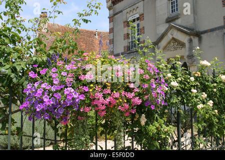 France, region ile de france, seine et marne, provins, cite medievale, maison, fleurs, - Stock Photo