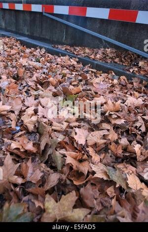 france, region ile de france, paris 7e arrondissement, quai d'orsay, feuilles mortes, automne, voie sur berge, - Stock Photo