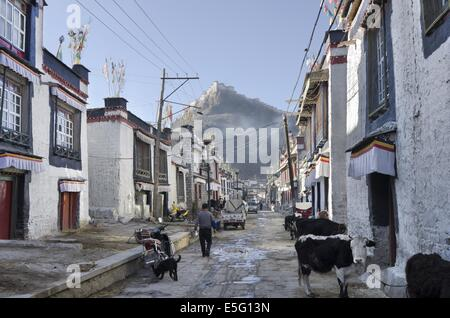 Traditional houses in the Old town of Gyantse - Stock Photo