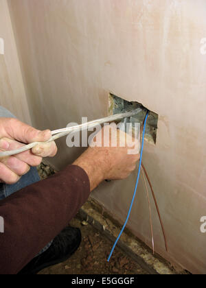 Electric sockets with wires ready for wiring into a new property or extension with electrician wiring them in - Stock Photo