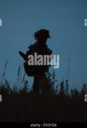 A Norwegian soldier makes his way to a tree line during a multinational field training exercise that demonstrated - Stock Photo