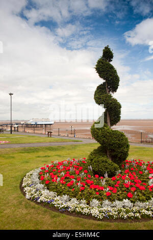 UK, England, Lincolnshire, Cleethorpes, Pier Gardens spiral topiary amongst floral planting - Stock Photo