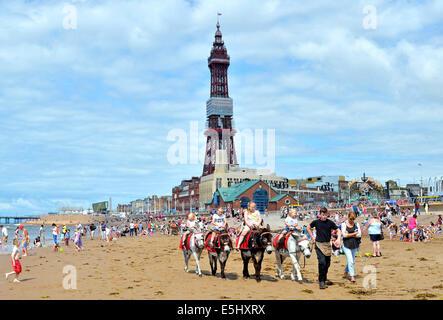 children enjoying a traditional donkey ride on the beach at Blackpool in Lancashire, England, UK - Stock Photo