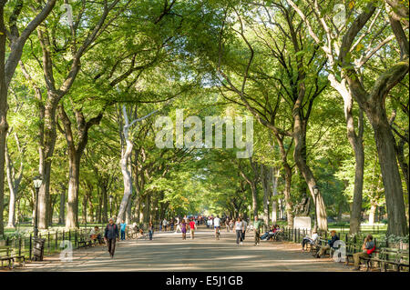 The Mall in Central Park, New York City, USA - Stock Photo