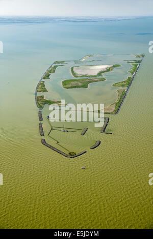 Netherlands, Andijk, Artificial island called De Kreupel, Dutch Forestry Commission. Aerial - Stock Photo